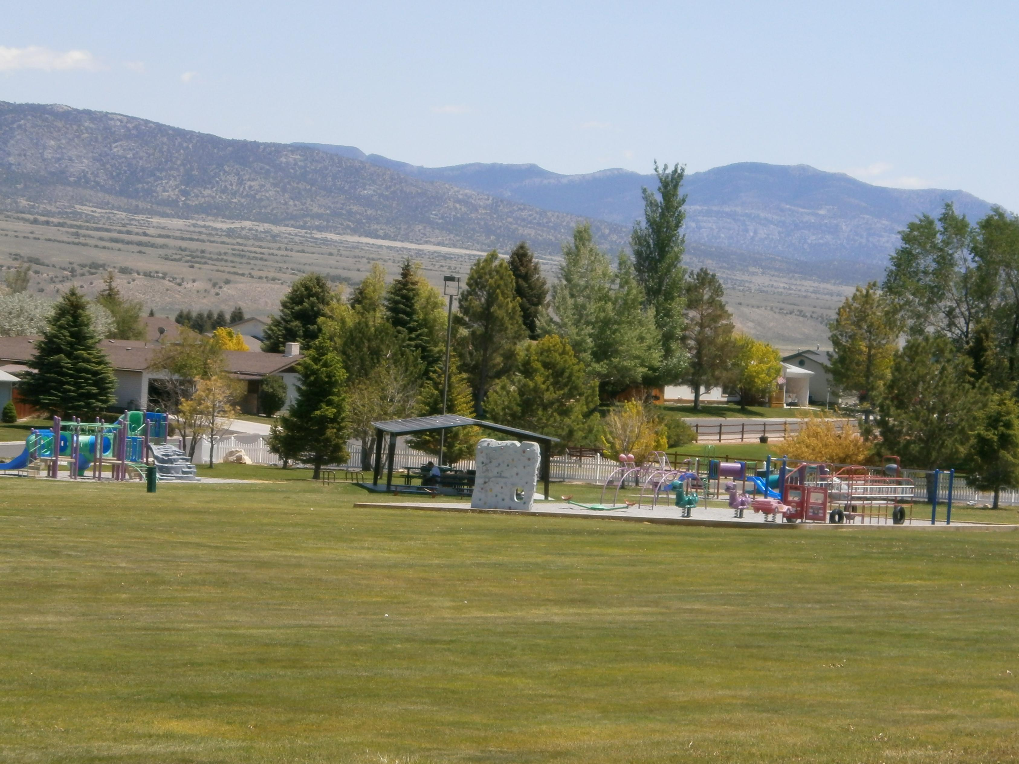 Large Grassy Area and Playground
